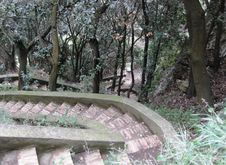 Free Stairway In Park Stock Photo - 87963770