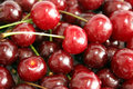 Free Cherries Royalty Free Stock Image - 880126