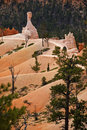 Free Trails In Bryce Canyon NP Stock Photo - 884320