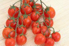 Free Tomatoes Stock Photos - 880763