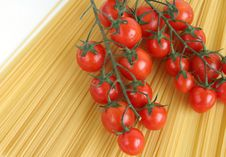 Free Tomatoes Royalty Free Stock Photo - 880805