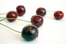 Free Cherries Stock Photo - 881350