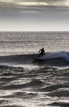Free Surfing_02 Stock Images - 881744