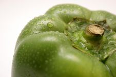 Free Green Pepper Stock Images - 881774