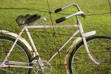 Free Bicycle Detail Stock Photography - 883872