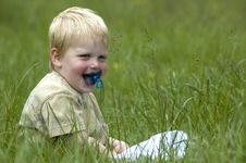 Free Little Boy In The Grass Royalty Free Stock Photography - 885497