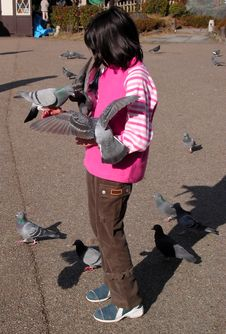 Girl Feeding Pigeons Stock Images