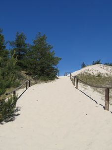 Free Sandy Path To Sea Royalty Free Stock Photos - 886608
