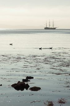 Free Tall Ship Silhouette, Ducklings, Calm Waters Royalty Free Stock Image - 888806