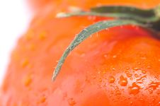 Free Red Fresh Tomato Stock Image - 8801061
