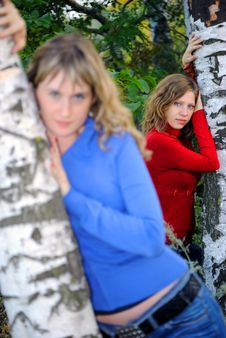 Free Girls Near Birches Stock Photo - 8804230