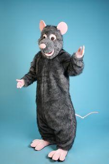 Free Rat Royalty Free Stock Photo - 8805345
