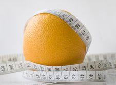 Free Orange Stock Photography - 8809202