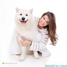 Free Lepetco Dog Product Manufacturer China &x28;9&x29; Stock Photo - 88032710