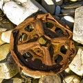 Free Rust Car Wheel Stock Images - 8810904