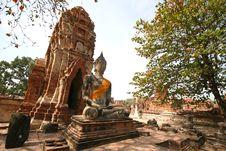 Free Monuments Of Buddha Stock Photo - 8813370