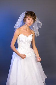 Free Studio Portrait Of A Aggressive Bride Stock Images - 8814564