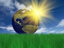 Free Globe On Grass Royalty Free Stock Photography - 8815827