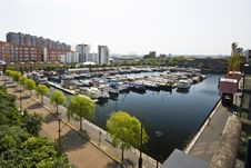 Free Dock Views On Isle Of Dogs Royalty Free Stock Photography - 8817027
