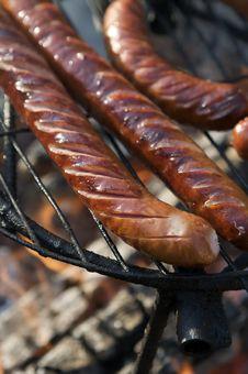 Free Sausage Stock Images - 8818924
