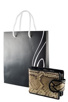 Free Shopping Bag And Purse Royalty Free Stock Photos - 8819818