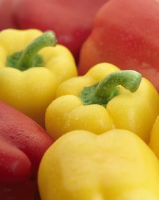 Free Delicious Yellow And Red Bell Peppers. Royalty Free Stock Images - 8819989