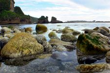 Free West Coast Beaches Of New Zealand &x28;1&x29; Royalty Free Stock Image - 88101486