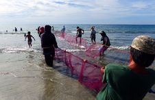 Free Hauling In The Nets. Philippines. Stock Photography - 88188992