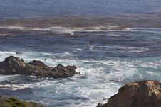 Free Birds Flying &x28;Big Sur&x29; Stock Photos - 88190603