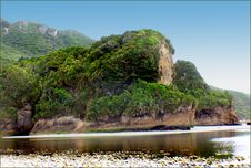 Free West Coast Beaches Of New Zealand &x28;3&x29; Royalty Free Stock Images - 88191139
