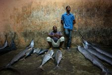 Free 2013_03_16_Somalia_Fishing H Stock Photos - 88191313