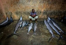 Free 2013_03_16_Somalia_Fishing O Stock Images - 88191474