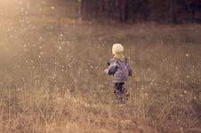 Free Boy Running Through Raindrops In Field Royalty Free Stock Photos - 88192768