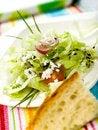 Free Salad Royalty Free Stock Photo - 8823075