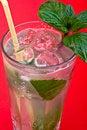 Free Mojito Cocktail Stock Photos - 8826763