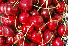 Free Wet Wild Cherries Royalty Free Stock Photo - 8820165