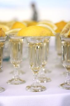 Free Tequila Glasses Stock Image - 8820961