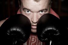 Free Man Boxing Royalty Free Stock Photo - 8821085