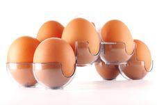 Free Eggs Royalty Free Stock Photo - 8821295