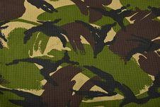 Free Camouflage Stock Photo - 8821940