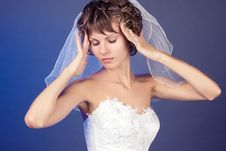 Free Studio Portrait Of The Young Coquettish Bride Stock Photography - 8823242