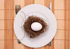 Free Egg In A Nest Served On A Plate Stock Image - 8824351