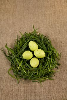 Free Grass Nest With Eggs Stock Images - 8824914