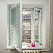 Free Window Stock Images - 8825044