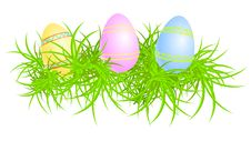 Free Vector Illustration Of Eggs In Grass Stock Images - 8825124