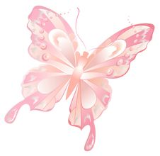 Free Abstract Butterfly Royalty Free Stock Photography - 8825807