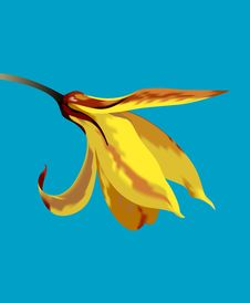Free Yellow Flower On A Blue Background Stock Images - 8826794