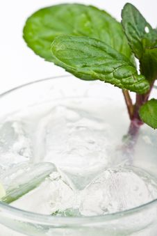 Free Mojito Cocktail Royalty Free Stock Photography - 8826807