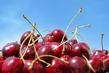 Free Wild Cherries Stock Photography - 8827252