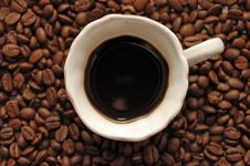Free The Top View On Coffee Grains With Coffee Royalty Free Stock Photos - 8828948